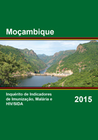 Cover of Mozambique AIS, 2015 - Final Report (Portuguese)
