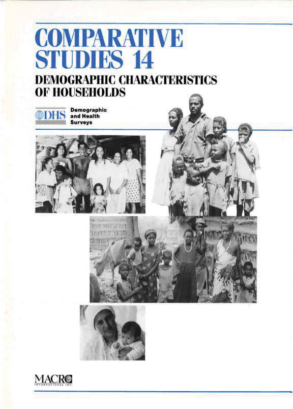 Cover of Demographic Characteristics of Households (English)