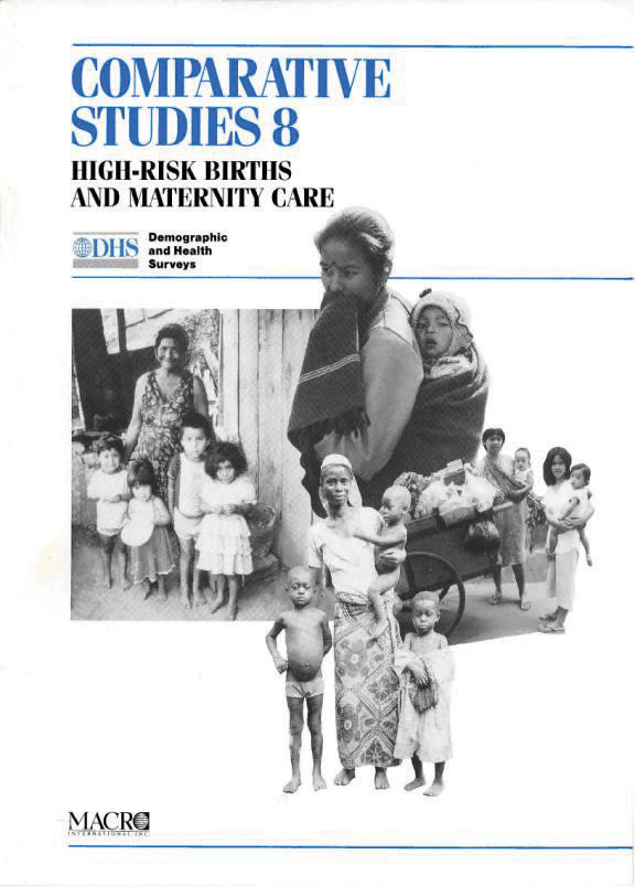 Cover of High-Risk Births and Maternity Care (English)