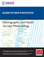 Cover of Guide to DHS Statistics (English)