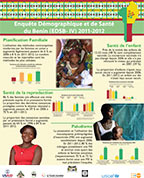 Cover of Benin 2011-12 - Wall Chart (French)