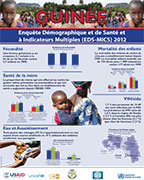 Cover of Guinea DHS 2012 - National Wall Chart (French)