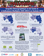Cover of Guinea DHS 2012 - Malaria Wall Chart (French)