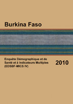 Cover of Burkina Faso DHS, 2010 - Final Report (French)
