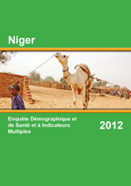 Cover of Niger DHS, 2012 - Final Report (French)