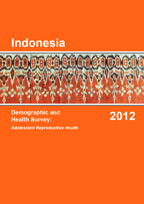 IDHS 2012 Adolescent Reproductive Health Final Report