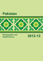 Cover of Pakistan DHS, 2012-13 - Final Report (English)