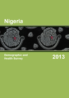 Cover of Nigeria DHS, 2013 - Final Report (English)