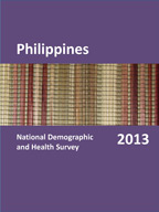 Cover of Philippines DHS, 2013 - Final Report (English)