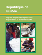 Cover of Guinea MICS, 2016 - Supplement to Guinea (MICS) (French)