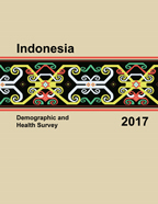 Cover of Indonesia DHS, 2017 - Final Report (English)