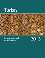 Cover of Turkey DHS, 2013 - Final Report (English)