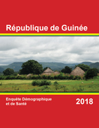 Cover of Guinea DHS, 2018 - Final Report (French)