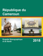 Cover of Cameroon DHS, 2018 - Final Report (French)
