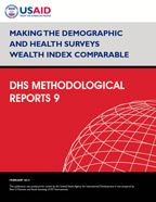 Cover of Making the Demographic and Health Surveys Wealth Index Comparable (English)