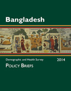Cover of Bangladesh DHS 2014 - Policy Briefs (English)