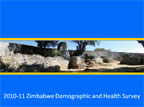 Cover of Zimbabwe: DHS, 2010-11 - Survey Presentations (English)