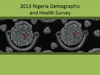 Cover of Nigeria: DHS, 2013 - Survey Presentations (English)