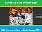 Cover of Tanzania: MIS, 2017 - Survey Presentations (English)