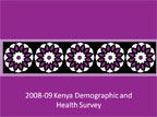 Cover of Kenya: DHS, 2008-09 - Survey Presentations (English)