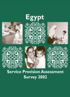 Cover of Egypt MCH SPA, 2002 - Final Report (English)