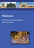 Cover of Pakistan Special, 2019 - Summary Report (English)