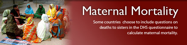 Some countries  choose to include questions on deaths to sisters in the DHS questionnaire to calculate maternal mortality. (Photo credit: © 2007 Bangladesh Center for Communication Programs, Courtesy of Photoshare)