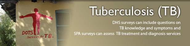 DHS surveys can include questions on  TB knowledge and symptoms and  SPA surveys can assess  TB treatment and diagnosis services. (Photo credit: © 2008 Anil Gulati, Courtesy of Photoshare)